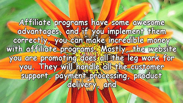 Advantages And Disadvantages Of Affiliate Programs
