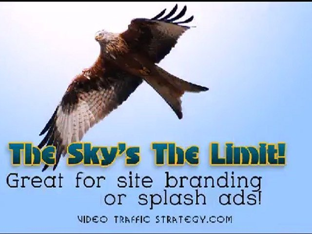 Mobile Video Marketing | Condor Marketing